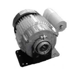 Motore elettrico  (ricambio...