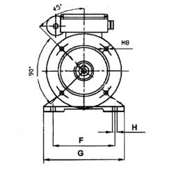 Motori per Pompe Rotative